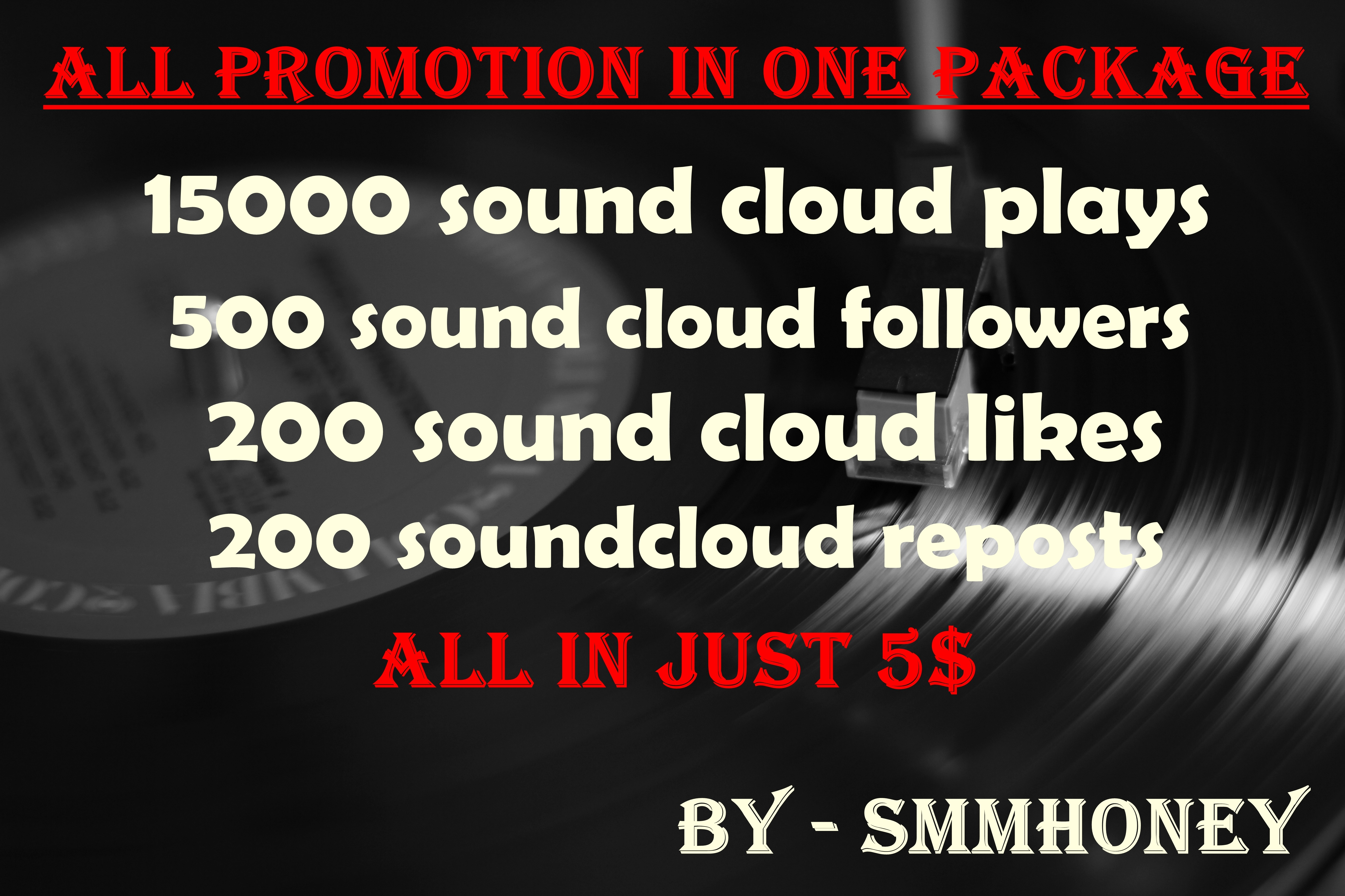 provide u all in one sound cloud promotion