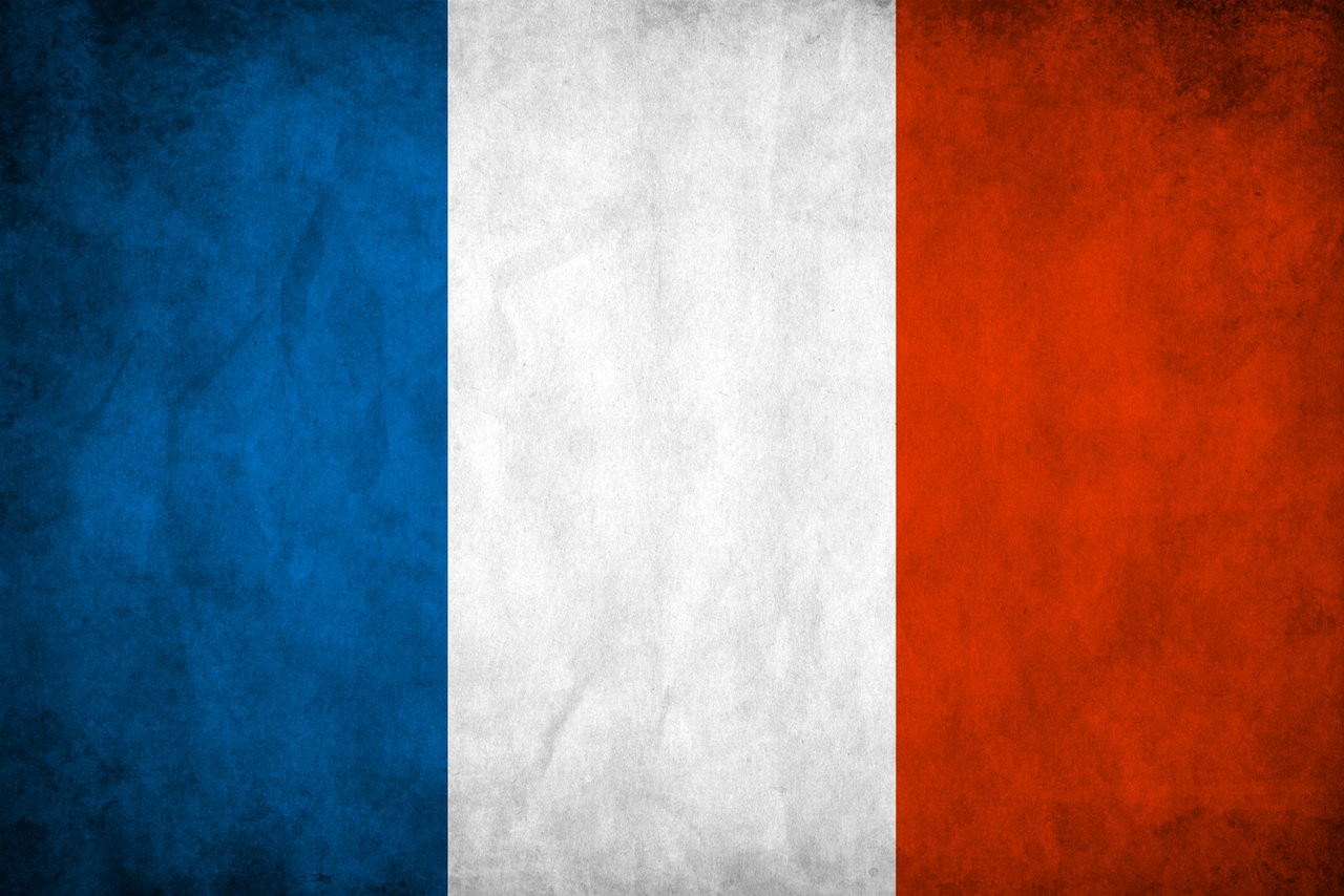 5,000 Real Human Targeted Traffic From France