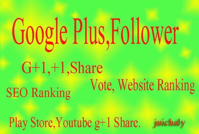 Get 510+ real human permanent worldwide Google Plus Circle Follow