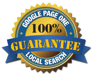 Guaranteed 1st Page Ranking for your site on Google,  Organic Traffic & Lead Generation