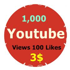 1,000 Youtube Views +100 Likes