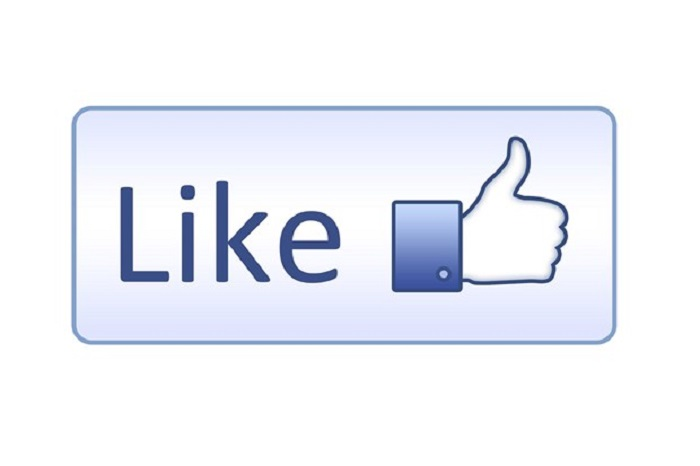 give you real 1000 facebook Fanpage or Photo or Post likes