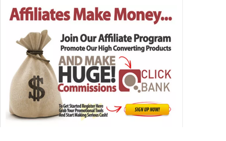 build you a CLICKBANK store wordpress site