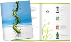 Bi-Fold Brochure - 2000