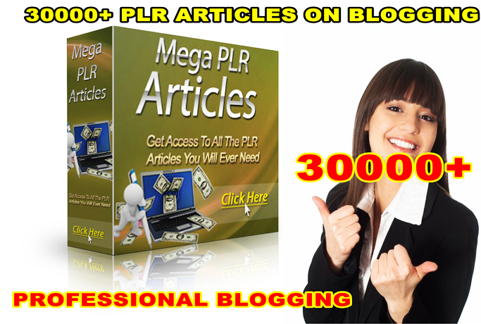 give 30000 PLR Articles On Professional Blogging