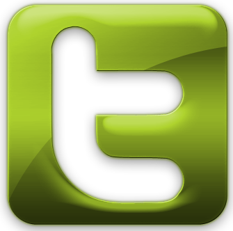 add 2000 real looking twitter follower in your account