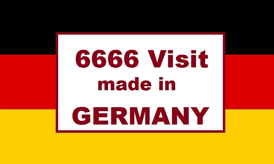 send 6666 human ORGANIC Germany Google Analytic visits Traffic