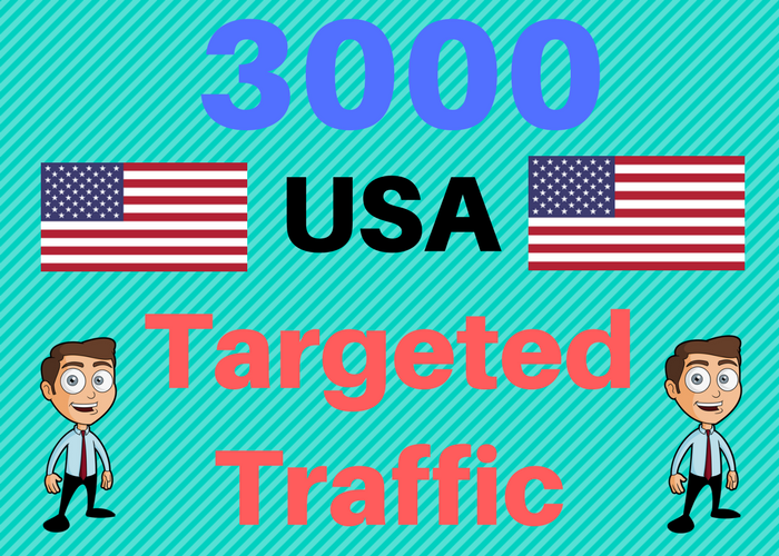 3000 USA TARGETED Human traffic to your web or blog site. Get Adsense safe and get Good Alexa rank