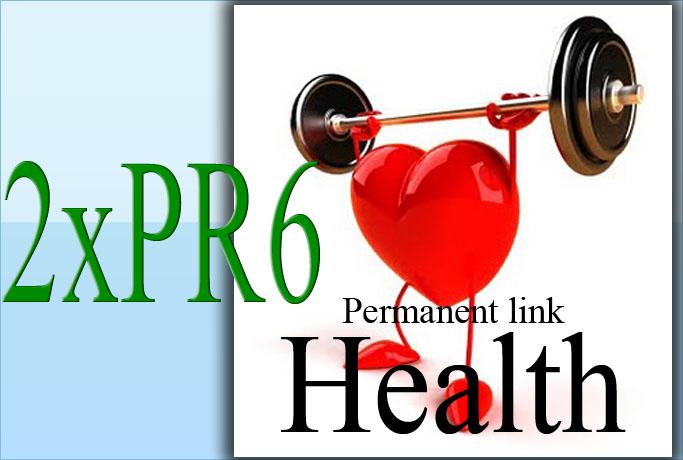 guest post 2xPR6 health niche site permanent