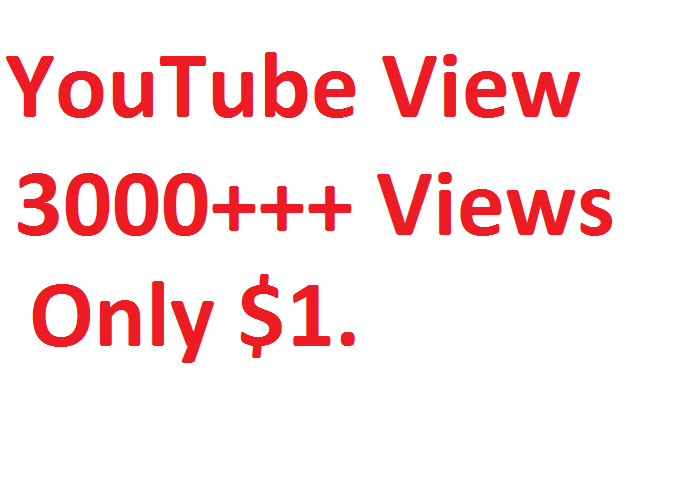 I will give you 1000++ HQ YouTube video views  within 48 Hours