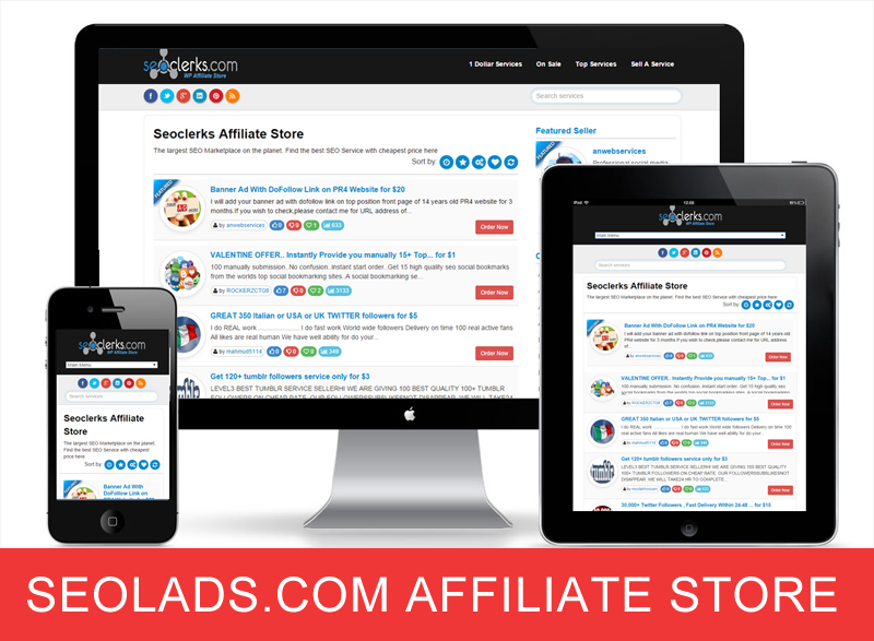 Seolads.com Affiliate Store WordPress Theme