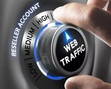 100000 REAL Visitors to your Website or Blog to Boost your Alexa, Adsense Safe Human Website Traffic