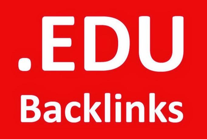 I Will Provide 300 .EDU backlinks only