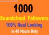 Non Drop 1000+ Music Profile Followers or Likes