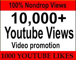 Provide 10,000 you  tube view 1000+ real and active You Tube Lik es your account.