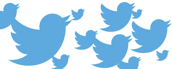 599+ Real & Permanent Human TWI-TTER Followers OR Favorites OR Retweets only