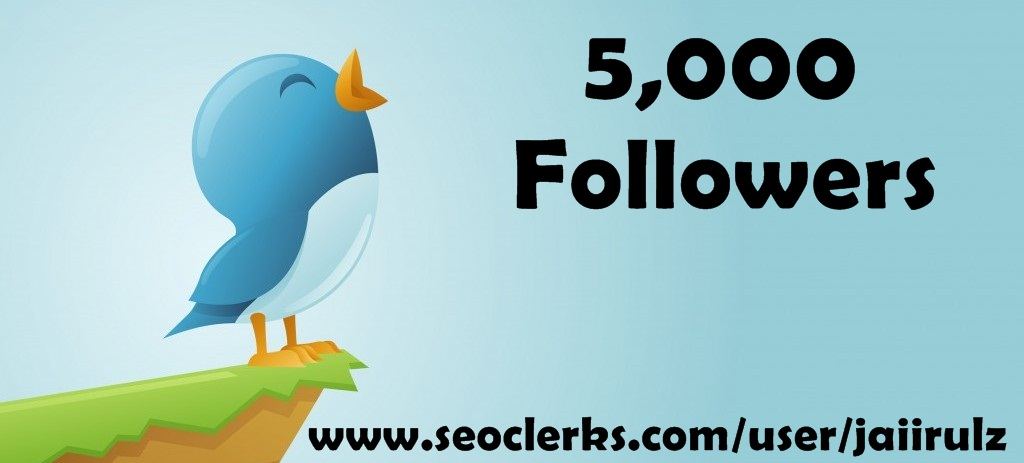 provide 5000 Followers
