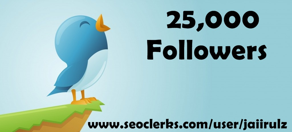 provide 5000 twitter followers