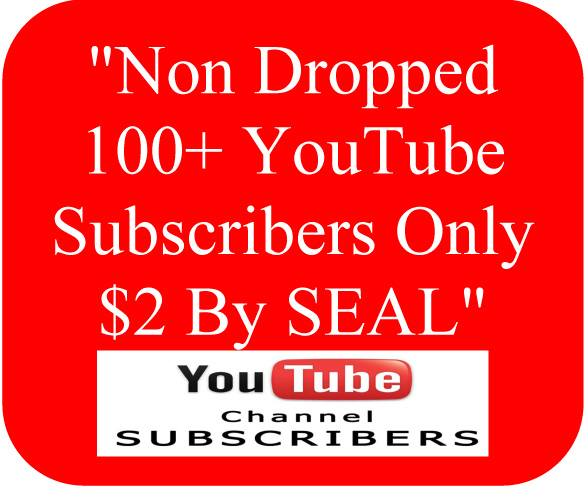 Real, Active & Lifetime Non Dropped 100+ YouTube Subscriber or 1000+ USA YouTube Views & 100+ YouTube Likes Within 24 Hours