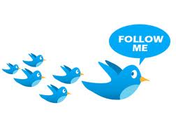 I Will Give You 25,000+ Staying Twitter Followers 42-Hours
