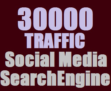 Real 30,000++ Web Traffic WORLDWIDE from Search Engine and Social Media