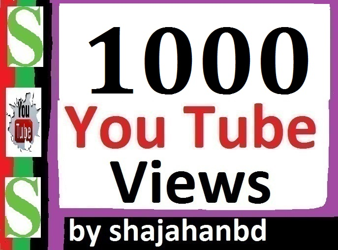 1000 High Quality Views Drop Refill Guarantee