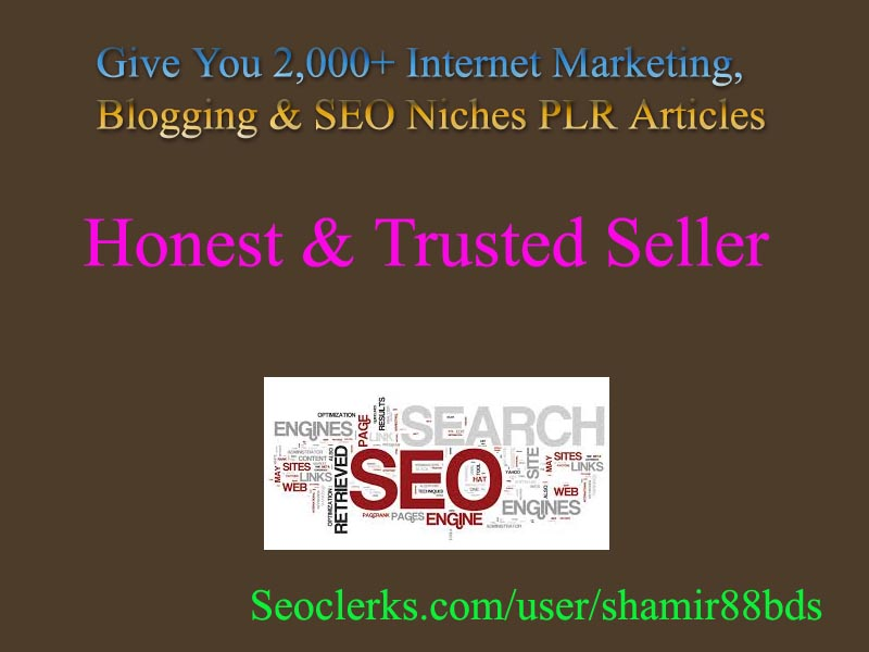 Give You 2,000+ Internet Marketing,  Blogging & SEO Niches PLR Articles