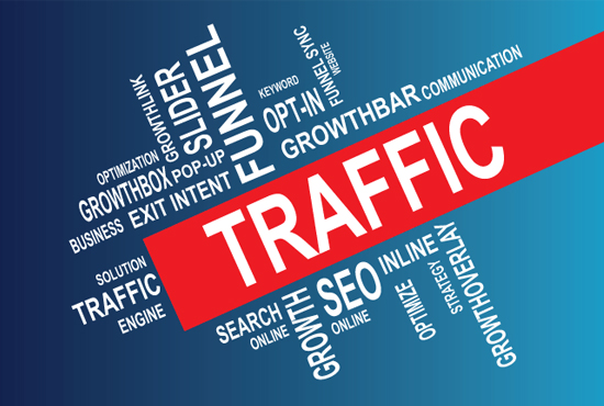 Daily 1000+ real WEB TRAFFIC for a month
