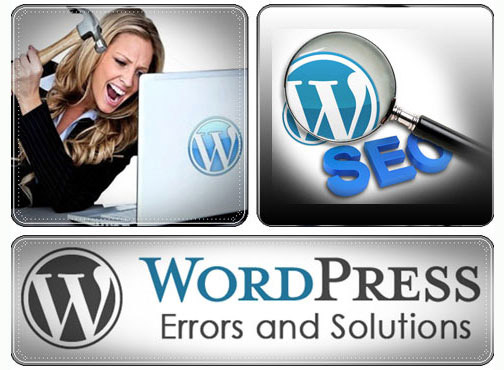 I Will Fix Any Wordpress Problem or Error or Issue