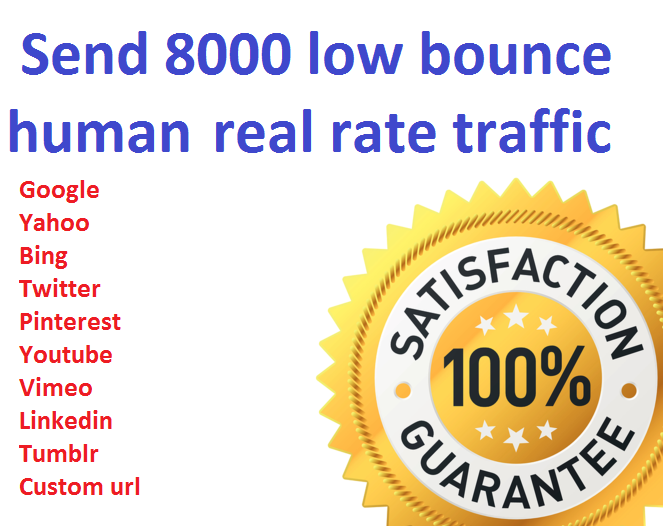 I will drive 8000+ low bounce rate worldwide traffic