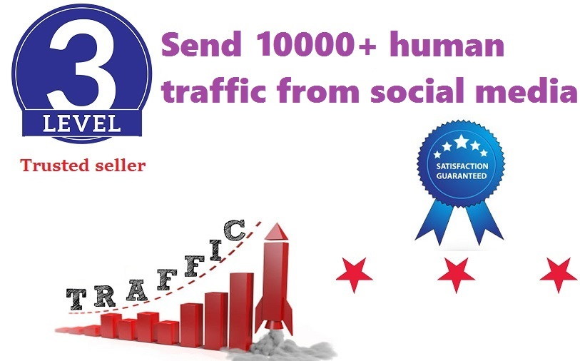 send 10000+ human traffic from google, yahoo,  etc