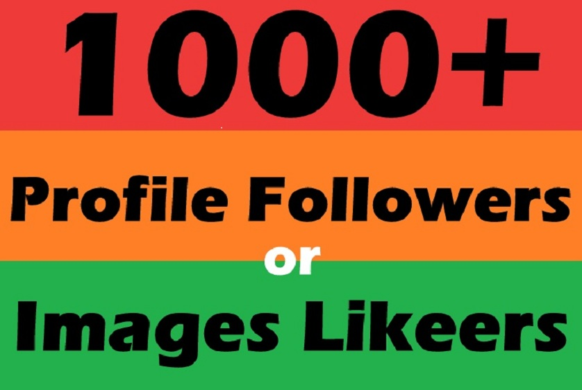 Instant 1000+ HQ Social Profile Followers in 24 Hours A+ Brand Service