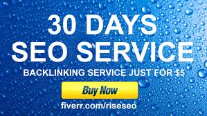 run 30 Days SEO campaign, 31001 backlinks!!