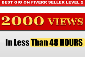 Give you 2099+ Real Human FAST YOUTUBE RETENTION Views In less then 6 - 24 Hour