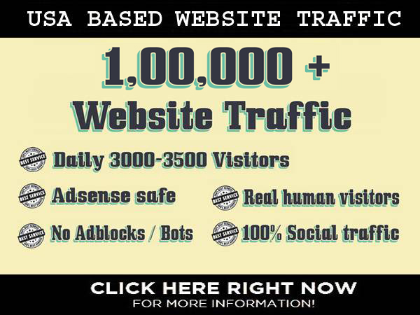 I will drive US based traffic to your website for 30 ...
