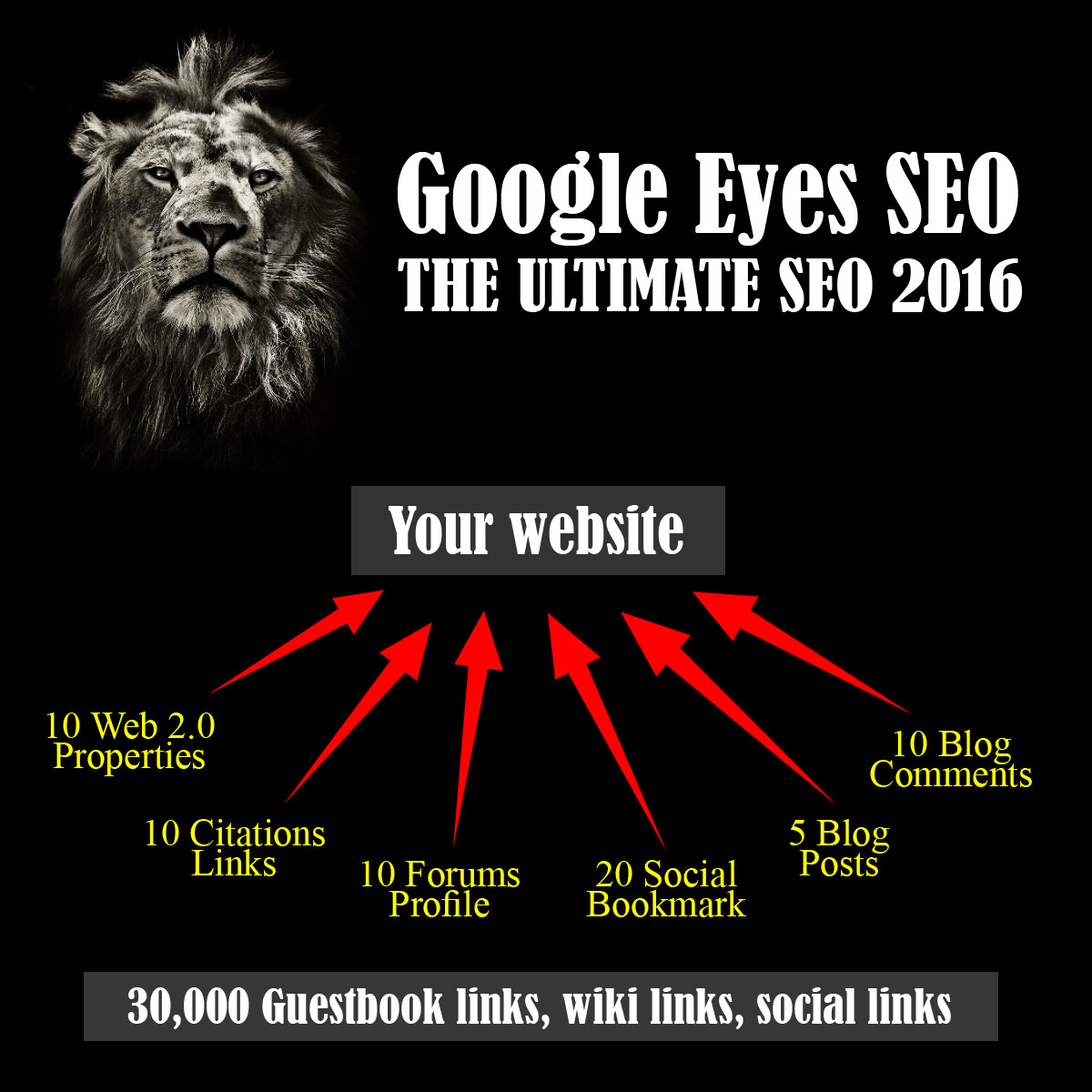 Google Eyes SEO 2016: Ultimate SEO Package to BOOST Your Ranking