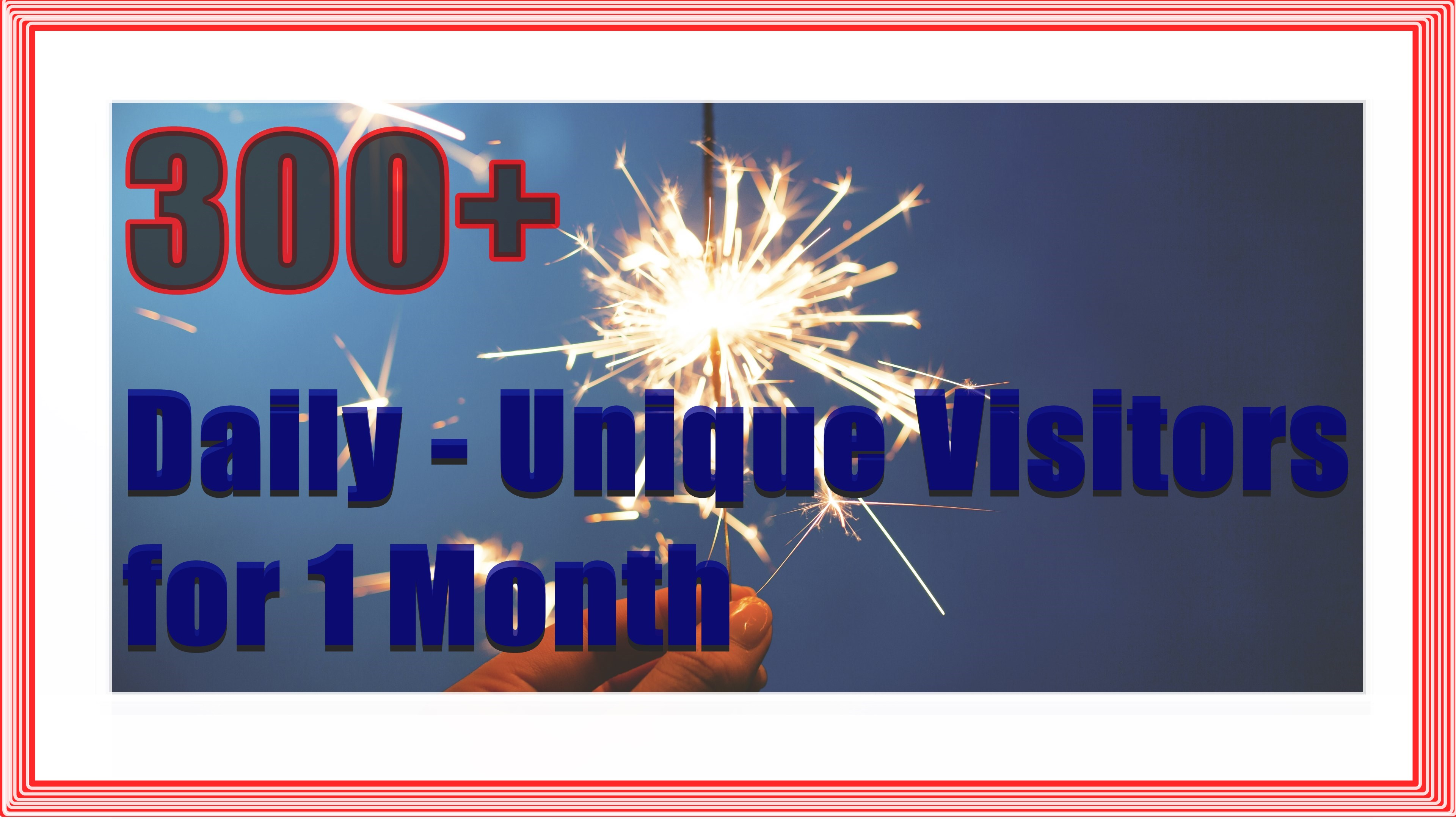 300+ daily Unique Visitors for one month