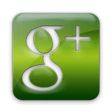 1002 + Linkedin Share OR 110 Google Plus social signal