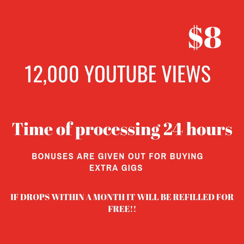 12,000 You-Tube V_I_E_W_E_R_S cheapest ptrice