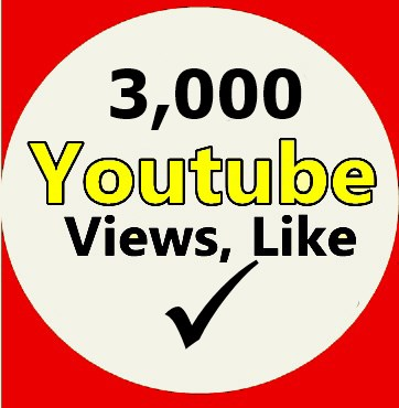 3,000 Youtube Views 100 Likes  On Your Youtube Video