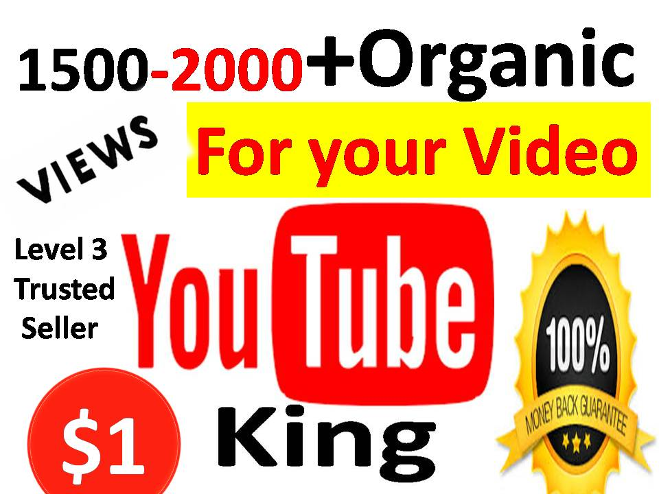 Get 1200-1500 High quality YouTube Video Views with 24-48 Hours Delivery or 20 Custom Comments Or 50 Real Subscribers