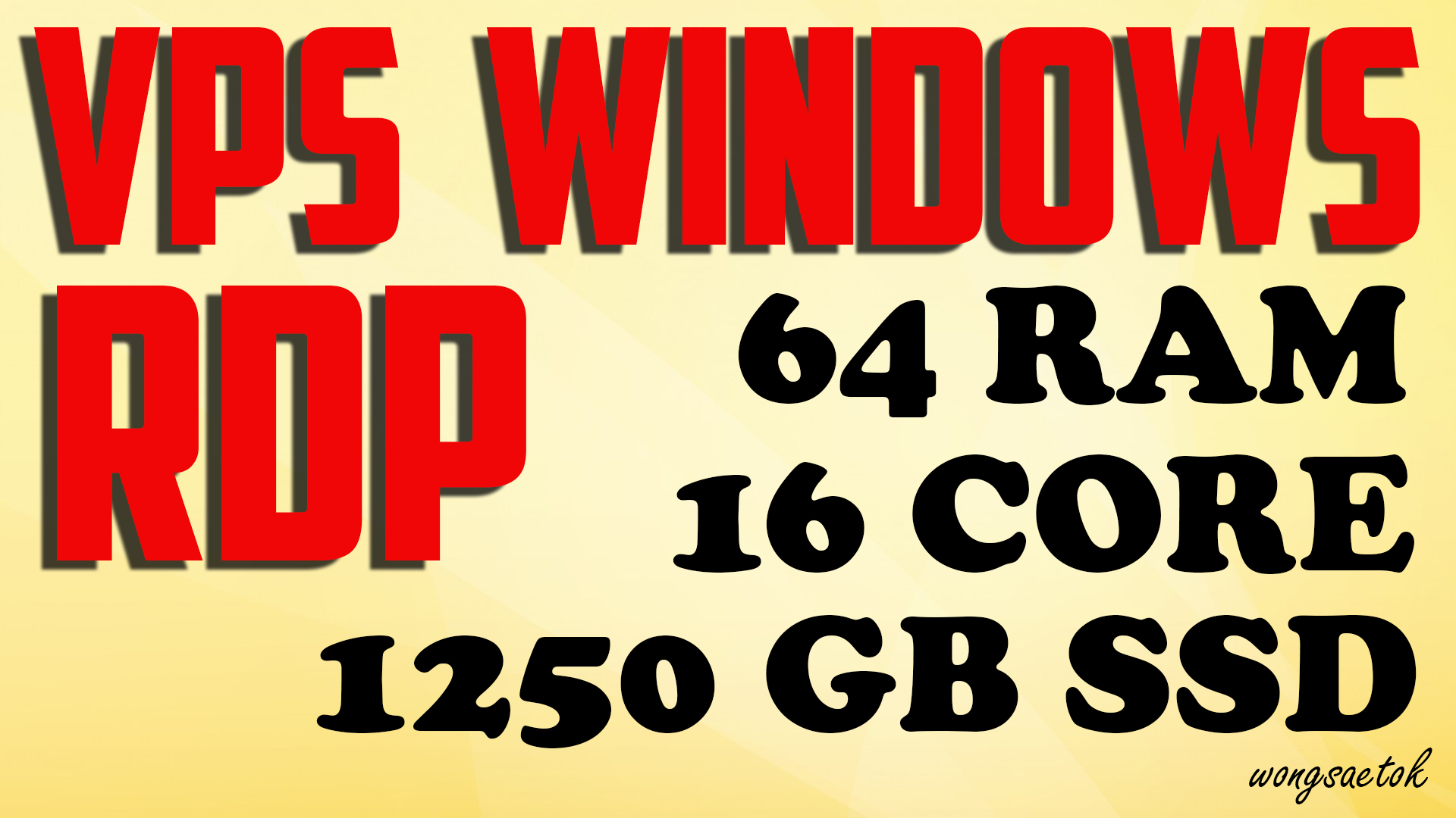 VPS RDP Windows 64 GB RAM 16 Core 1.25 TB SSD RENEWABLE