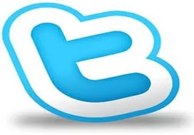 Best 1000+ Twitter Followers Will be Delivered to Your Twitter Account Just