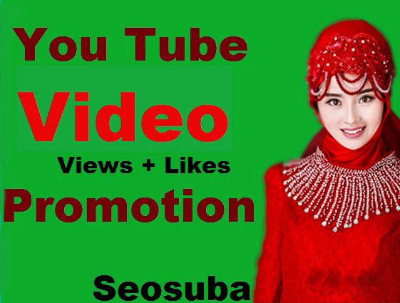 Organic Video Views Marketing Promotion Fully Safe