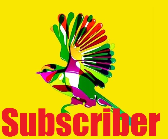 2.000 YouTube Subscribers All Time Rifil Channel Subscriber Only