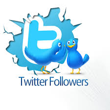 I WILL ADD +6000 TWITTER FOLLOWERS