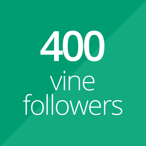 400 High Quality Vine followers