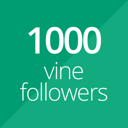 1000 High Quality Vine followers