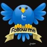 Twitter Followers