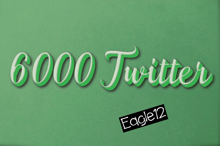 ADD 6,000 HQ Twi-tter follo or 2500  retweet splitable only